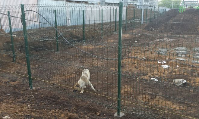 Забор из сварной сетки для ограждения строительства